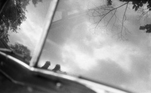 Tree and sky reflected in a classica car's windscreen, photographed in Amsterdam. Delta 3200