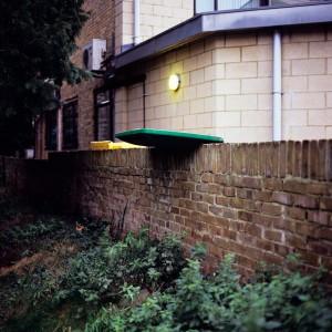 Back garden, Chislehurst Bronica SQ-A
