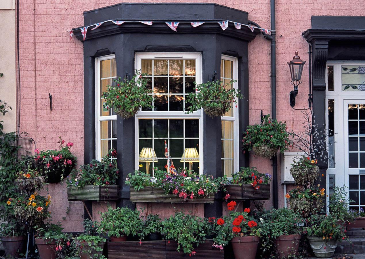 Pollice verde a casa: in Inghilterra ed in Italia