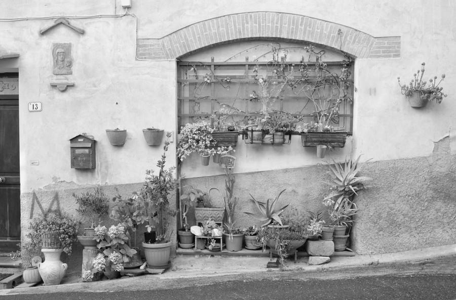 Calci, Italia  http://goo.gl/maps/XMrZm