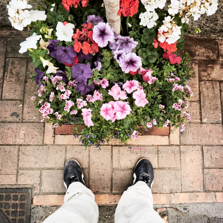 You cannot recognise Capri in this picture (neither can you recognise me!) , yet only in Capri you can so easily find such pretty flowerbeds ready for being photographed