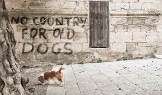 No country for old dogs